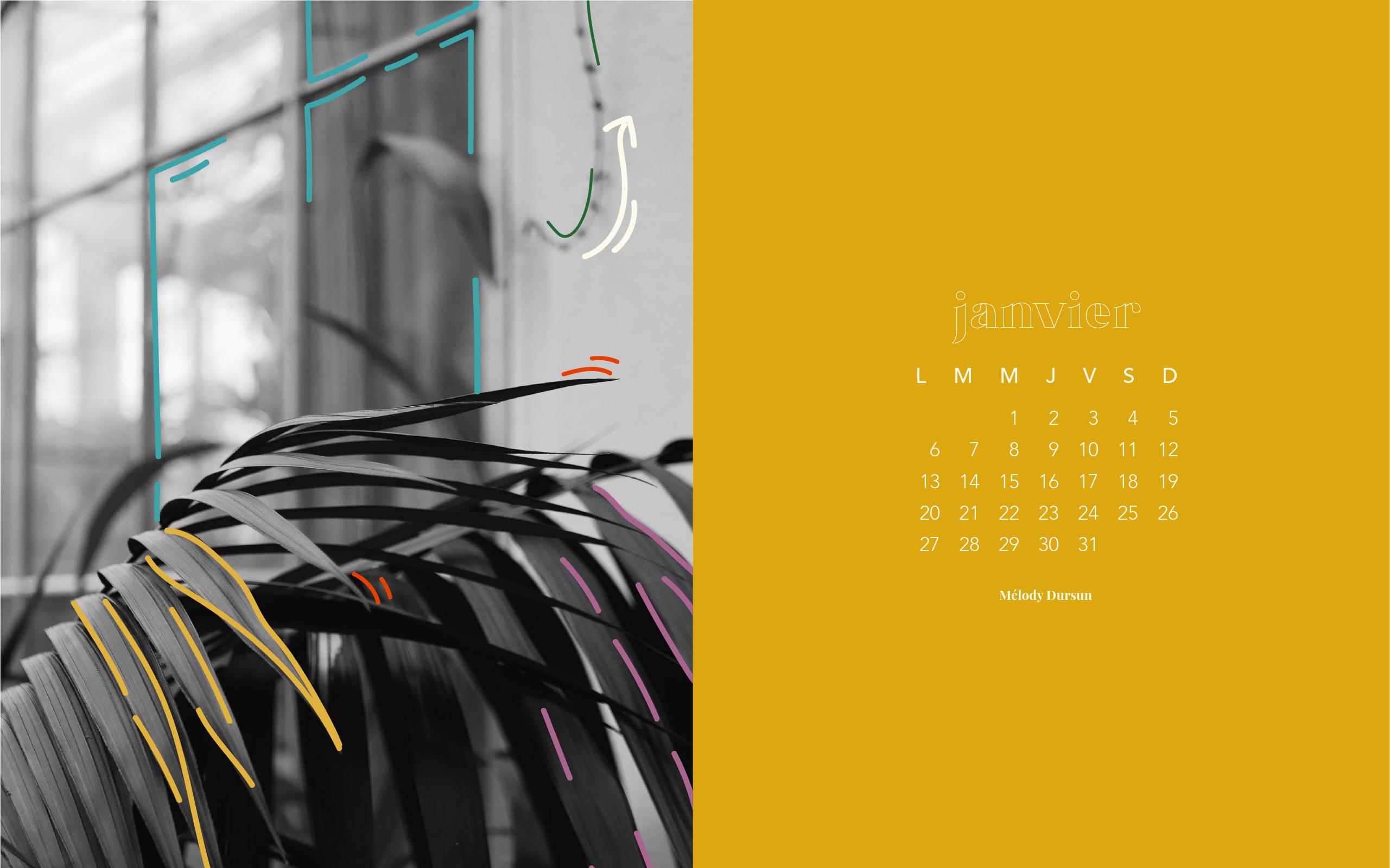 Calendrier & fonds d'écran – Janvier 2020